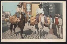 Postcard HAVANA CUBA  Vegetable Dealers/Vendors on Horseback view 1904