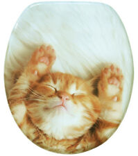 SOFT CLOSE PRINTED WC TOILET SEAT | STABLE HINGES | SLOW CLOSE | CAT LILLY