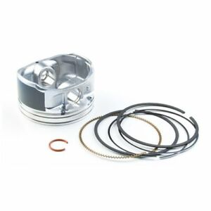Briggs & Stratton 792072 Piston Assembly