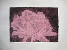 COOL cristallo tulipano Rosa-Edizione limitata firmata acquatinta acquaforte da studio Angela