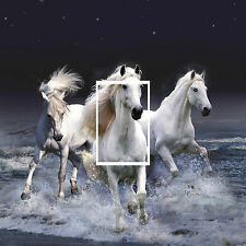 Horses Light Switch Cover Skin Sticker Any Room