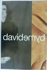 Rare David Bryne Talking Heads 1994 Vintage Original Music Store Promo Poster