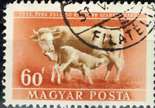 Hungary Farm Animals Cows stamp 1951