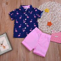 Kid Boys Flamingo Print Shirt Tops+Shorts Sets 2Pcs Summer Party Casual Clothing