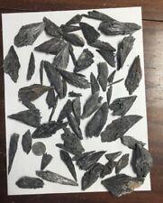 1lb Bulk Black Kyanite Crystals Blades Fans Wholesale Clusters