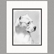 Dogo Argentino Dog Original Art Print 8x10 Matted to 11x14