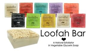 Primal Elements LOOFAH BAR Natural Exfoliate Glycerin Soap Choice from 10 Scents