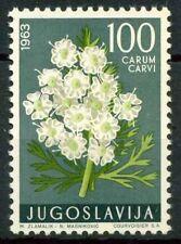 Jugoslavia 1963 SG 1079 Nuovo ** 100% Piante medicinali