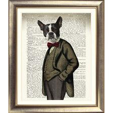 Art print on ORIGINALE ANTICO LIBRO pagina DOG BOSTON TERRIER immagine dizionario