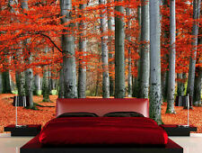 Red Forest 12' x 8' (3,66m x 2,44m)-Wall Mural