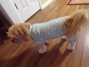 pet dog pajamas, stretchy, giraffes, baby blue, Small **(read size details)