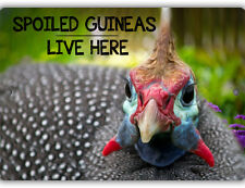 Spoiled Guineas Indoor Outdoor Aluminum No Rust No Fade Guinea Fowl Sign