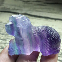 "2"" Carved Rainbow fluorite Dog Natural Quartz Crystal dog skull reiki healing"