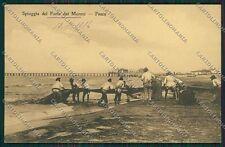 Lucca Forte dei Marmi cartolina QQ2673