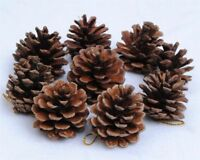 Hanging Ball Christmas Tree Pine Cone Holiday Decoration Ornament For Home Party