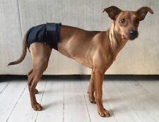 Equafleece Dog Shorts Black