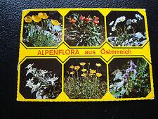 AUTRICHE - carte postale 1982 alpenblumen (cy33)
