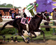 War Emblem 2002 Preakness Stakes Photo 8x10