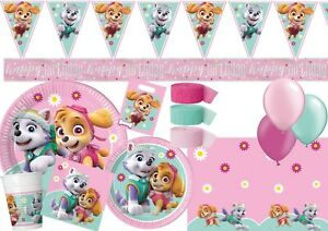 Paw Patrol Skye Everest Mint Tableware Party Decorations Birthday Supplies