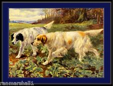 English Picture Print English Setter Dog Dogs Hunting Vintage Art Poster