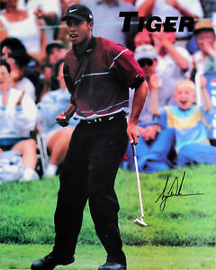 Tiger Woods PGA Tour Authentic Signed 16x20 Photo Autographed JSA #Z79243