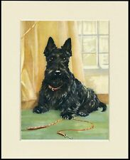 SCOTTISH TERRIER WAITING WITH HIS LEAD LOVELY DOG PRINT MOUNTED READY TO FRAME