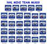 RETIRED NHL HOCKEY OFFICALLY LICENSED TEAM CERAMIC 2-SIDED MINI MUG SHOT GLASS
