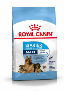 Food Puppies And Mothers of Race Grande Royal Canin Maxi Starter Mother&babydog