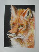Hand drawn animal pictures, Original Contemporary FOX