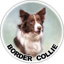 2 Border Collie (Red & White) Car Stickers By Starprint
