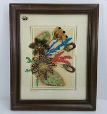 Ellen Kiefert Feather Flower Craft Prairie Pictures June Grass Dill Pheasant