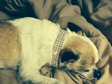 """Blinged Out Pet Pink Crystal Rhinestone MED Dog Collar 13-16"""""""
