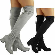 Over Knee Boots Faux Suede Cuban Heel Shoes for Women