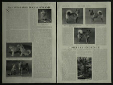 Finsk Spets Mrs De La Poer Beresford Mrs And Miss Pink 1936 2 Page Article 7131