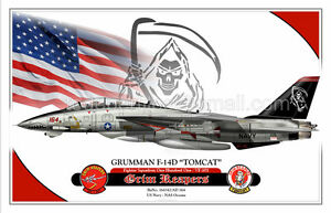 """F-14D """"TOMCAT"""" VF-101 - Grim Reapers -  Airplane Profile Poster"""