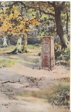 Hampshire Postcard - Rufus Stone - New Forest - Ref ZZ4293