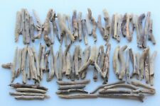 Treibholz Schwemmholz Driftwood  80 Ästchen  Dekoration Basteln Terrarium *239*
