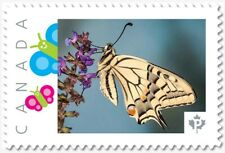 uq. BUTTERFLY = SWALLOWTAIL = Picture Postage stamp MNH Canada 2019 [p19-02sn16]