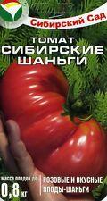 "Tomato ""Siberian shangi""  Russian High Quality"