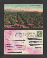 1912 AN ORANGE GROVE CALIFORNIA POSTCARD
