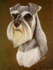 "SALE - MINIATURE SCHNAUZER PAMELA RYAN DOG PRINT 12X16"" REDUCED - BRIAN HUPFIELD"