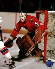 Tony Esposito Chicago Blackhawks Licensed NHL 8x10 Photo