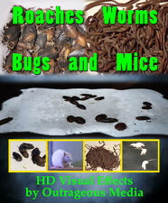 Worms, Roach Bugs and Mice - USB  Halloween Decor, Outrageous Media