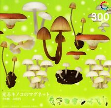 The encapsulated nature Technicolor MONO glowing mushrooms set magnet 8