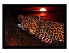 362dc7a6 Leopard Unisex Adult T-Shirts for sale   eBay