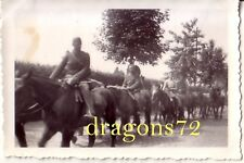 Foto Westfront Belgien belgische Reiterei geht in Gefangenschaft Pow+mehr orig