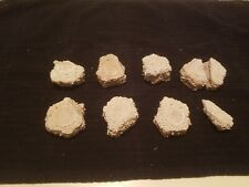 6 Plus 3 Partial Glyptodon Scutes Fossils - Extinct Armadillo