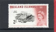 Falklands Islands QE2 1960 Birds 2s. sg 204 VLH.Mint