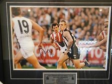 COLLINGWOOD VS ST KILDA 2010 AFL PREMIERS DANE SWAN LARGE SIGNED PRINT WITH COA