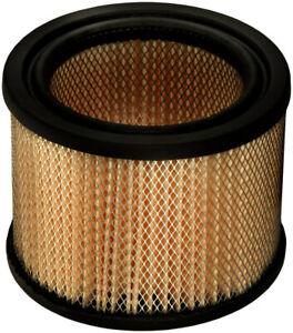 Air Filter-Extra Guard Fram CA73
